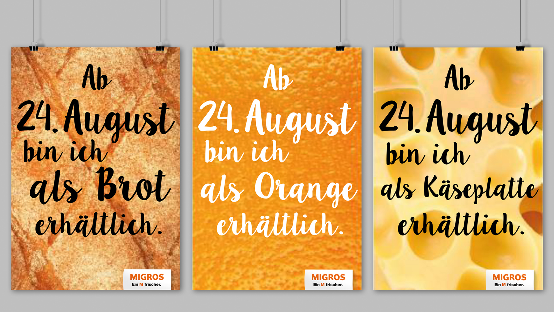 Monatge-Plakate